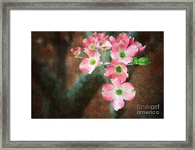 Pink Dogwood Cascade Framed Print by Andee Design