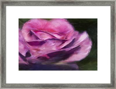 Pink Framed Print by Jack Zulli