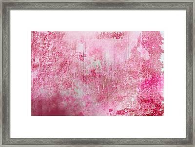 Pink Lady Framed Print by Christopher Gaston