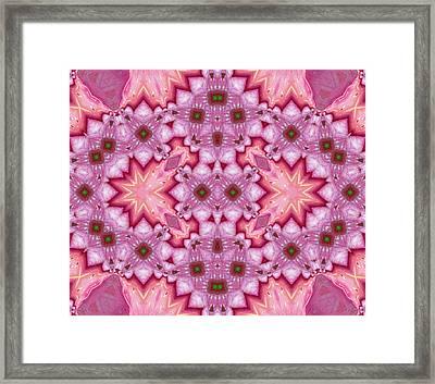 Pink Splash Mandala Abstract Framed Print by Georgiana Romanovna