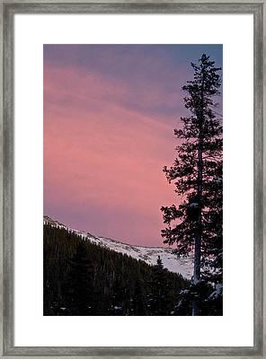 Pink Sunset Framed Print by Lisa  Spencer