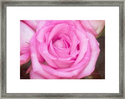 Pink Surprise Framed Print by Joan Bertucci
