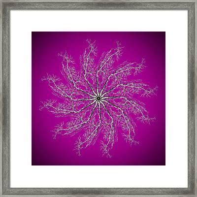 Pinwheel IIi Framed Print by Debra and Dave Vanderlaan