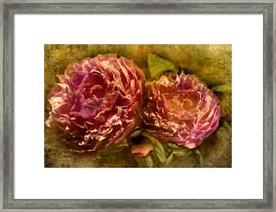 Piony Framed Print by Svetlana Sewell