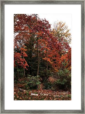 Place Of Beauty Framed Print by John Rizzuto