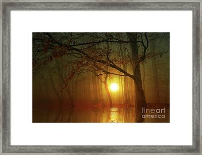 Place To Dream Framed Print by Bruno Santoro