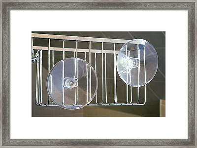Plastic Suction Cups Framed Print by Sheila Terry