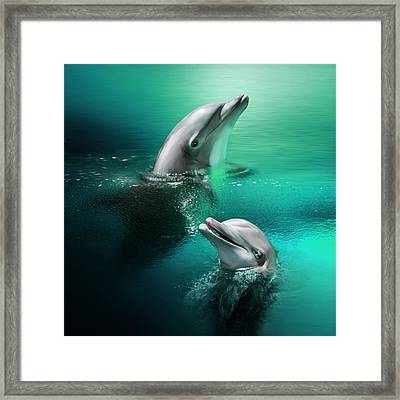 Playful Dolphins Framed Print by Julie L Hoddinott