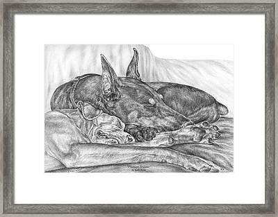Pleasant Dreams - Doberman Pinscher Dog Art Print Framed Print by Kelli Swan
