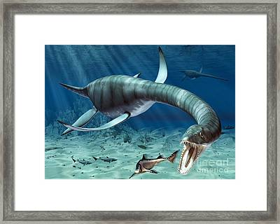 Plesiosaur Attack Framed Print by Roger Harris and Photo Researchers