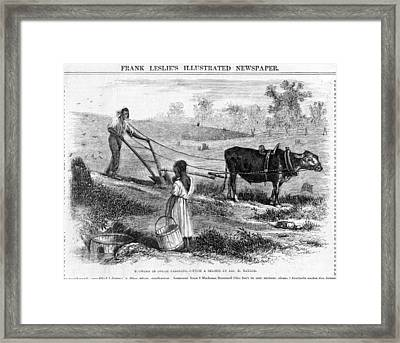Plowing In South Carolina.  African Framed Print by Everett