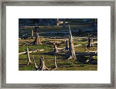 Points Up - Manasquan Reservoir Framed Print by Angie Tirado