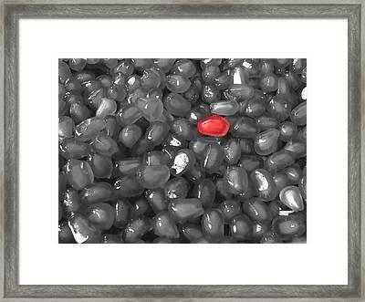 Pomegranate Seed  Framed Print by Sumit Mehndiratta