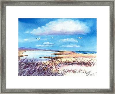 Pond At South Cape Beach Framed Print by Joseph Gallant