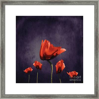 Poppies Fun 02b Framed Print by Variance Collections