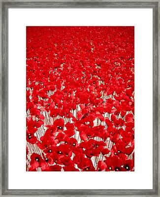 Poppy Meadow ... Framed Print by Juergen Weiss