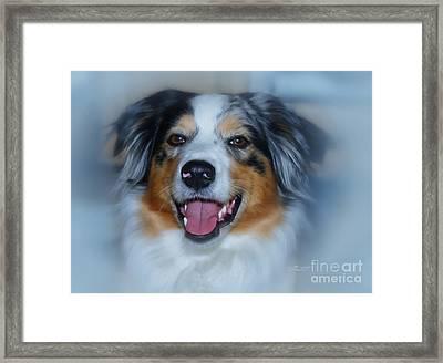 Portrait Of A Dog Lady Framed Print by Jutta Maria Pusl