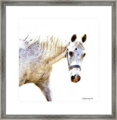 Portrait Of A Horse Series II Framed Print by Kathy Jennings