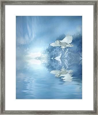 Portrait Of Winter Framed Print by Sharon Lisa Clarke