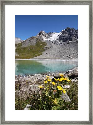 Postcard From Alpes Framed Print by Mircea Costina Photography