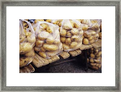 Potatoes Framed Print by Veronique Leplat
