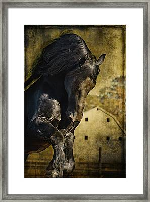 Power House Horse D1496 Framed Print by Wes and Dotty Weber