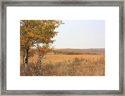 Prairie Autumn Framed Print by Jim Sauchyn