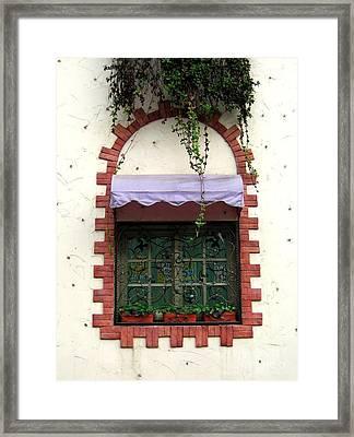 Pretty Decorated Window Framed Print by Yali Shi