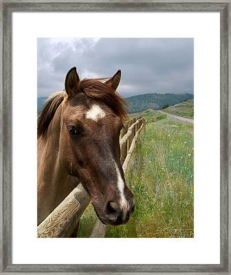Pretty Girl Framed Print by Julie Magers Soulen