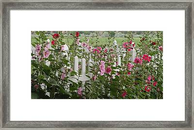Pretty Picket Framed Print by Elizabeth Sullivan