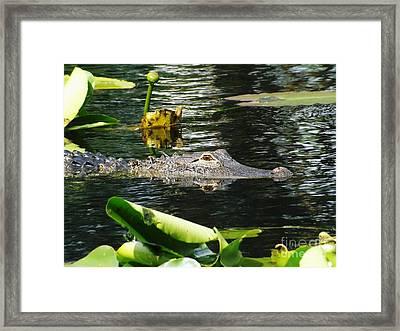 Primeval Eye Framed Print by Gerald Strine