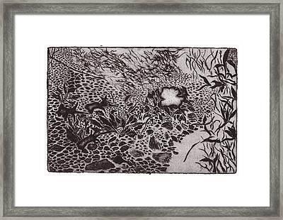 Primrose At Dusk Framed Print by Taylor Lee Bisbee