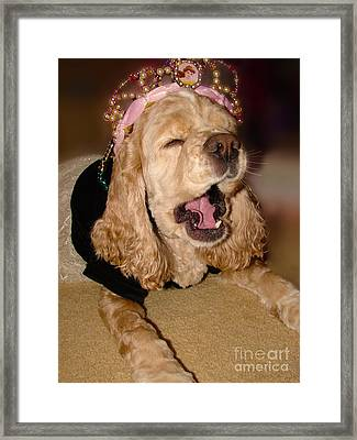 Princess Lazy Paws Framed Print by Laura Brightwood