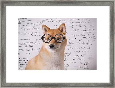 Professor Dog Framed Print by Eric Jung