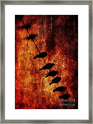 Prophets Framed Print by Andrew Paranavitana