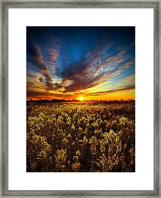 Proposal Framed Print by Phil Koch