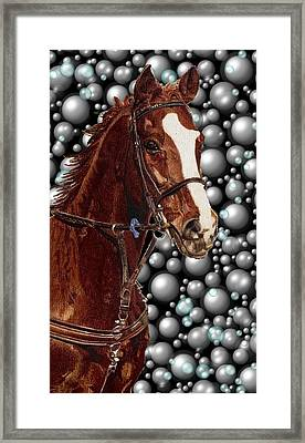 Proud With Bubbles Framed Print by Patricia Barmatz