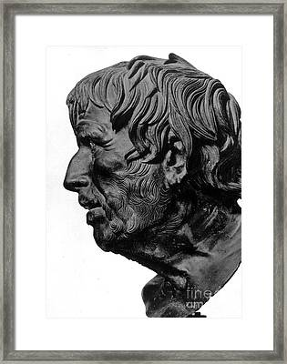 Pseudo-seneca Framed Print by Granger