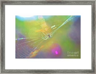 Psychedelic Pspyder Framed Print by Lynda Dawson-Youngclaus