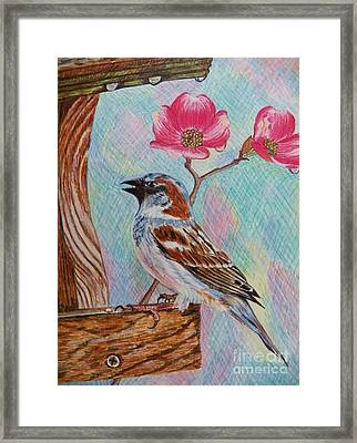 Ptg   Sparrow With Pink Dogwood In The Rain Framed Print by Judy Via-Wolff