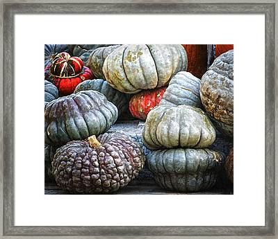 Pumpkin Pile II Framed Print by Joan Carroll