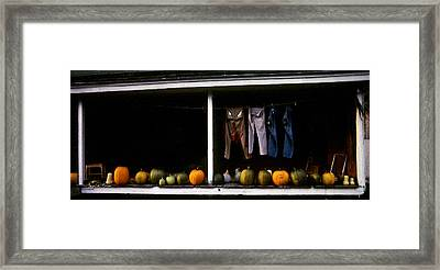 Pumpkins And A Washline Framed Print by Wayne King