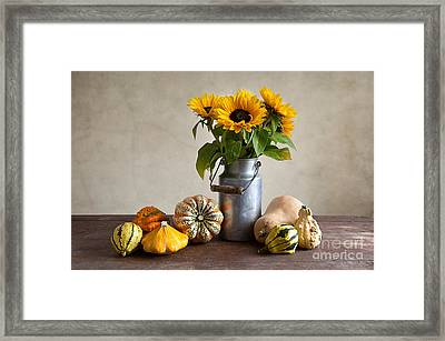 Pumpkins And Sunflowers Framed Print by Nailia Schwarz
