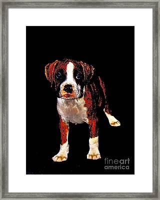 Pup 2 Framed Print by Xn Tyler