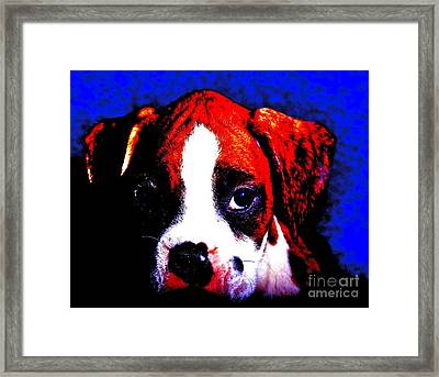 Pup1 Framed Print by Xn Tyler
