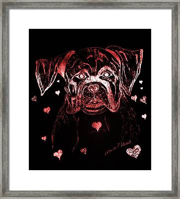Puppy Love Framed Print by Maria Urso