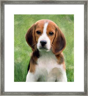 Puppy Portrait Framed Print by Snake Jagger
