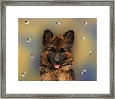 Puppy With Bubbles Framed Print by Sandy Keeton