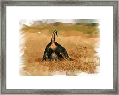 Pups At Play Framed Print by Jeffrey Brown