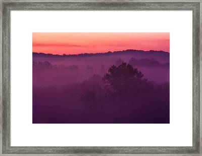 Purple Dawn Framed Print by Matt  Trimble